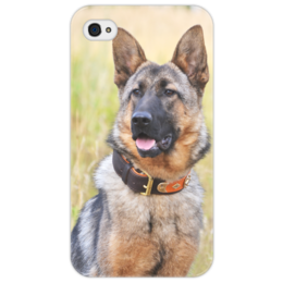 "Чехол для iPhone 4/4S ""Овчарка Жасмин"" - собака, овчарка, овчар-команда"