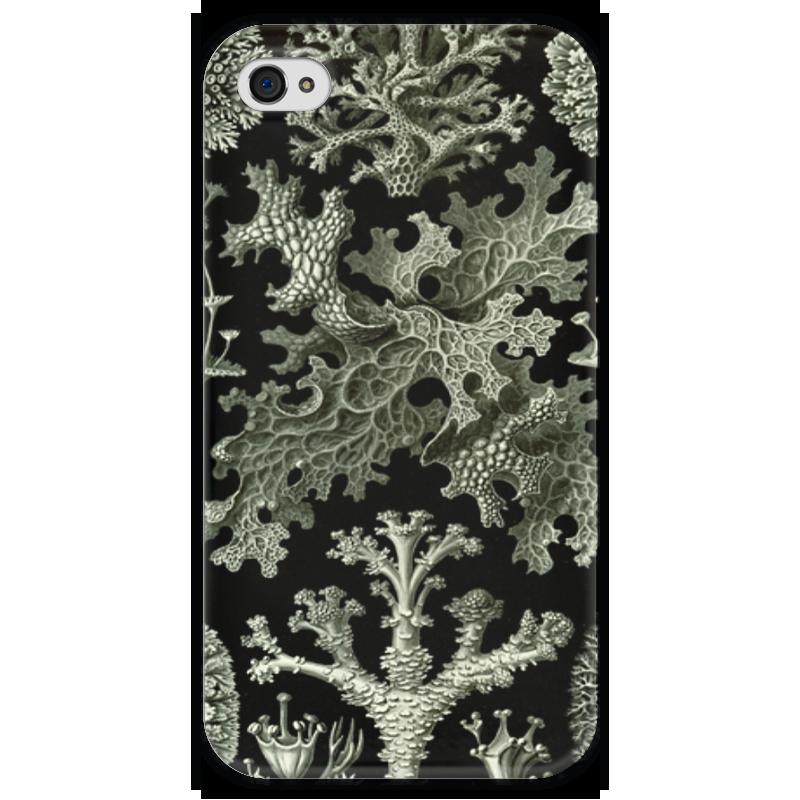 Чехол для iPhone 4 глянцевый, с полной запечаткой Printio Лишайники (lichenes, ernst haeckel) чехол для samsung galaxy s7 edge силиконовый printio лишайники lichenes ernst haeckel