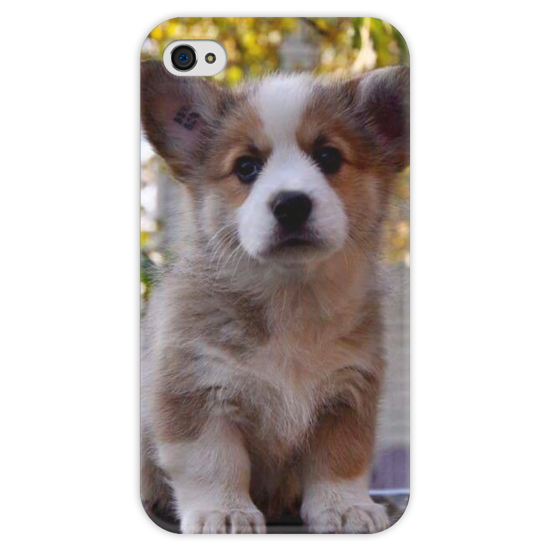 Чехол для iPhone 4 глянцевый, с полной запечаткой Printio Коржик вельш кардиган