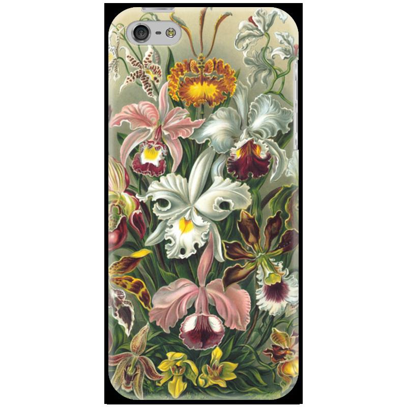 Чехол для iPhone 5 Printio Орхидеи (orchideae, ernst haeckel) самые дешевые орхидеи в москве