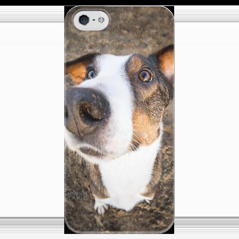 Чехол для iPhone 5 глянцевый, с полной запечаткой Printio Собака чехол для iphone 5 глянцевый с полной запечаткой printio spinner mobile white спиннер чехол