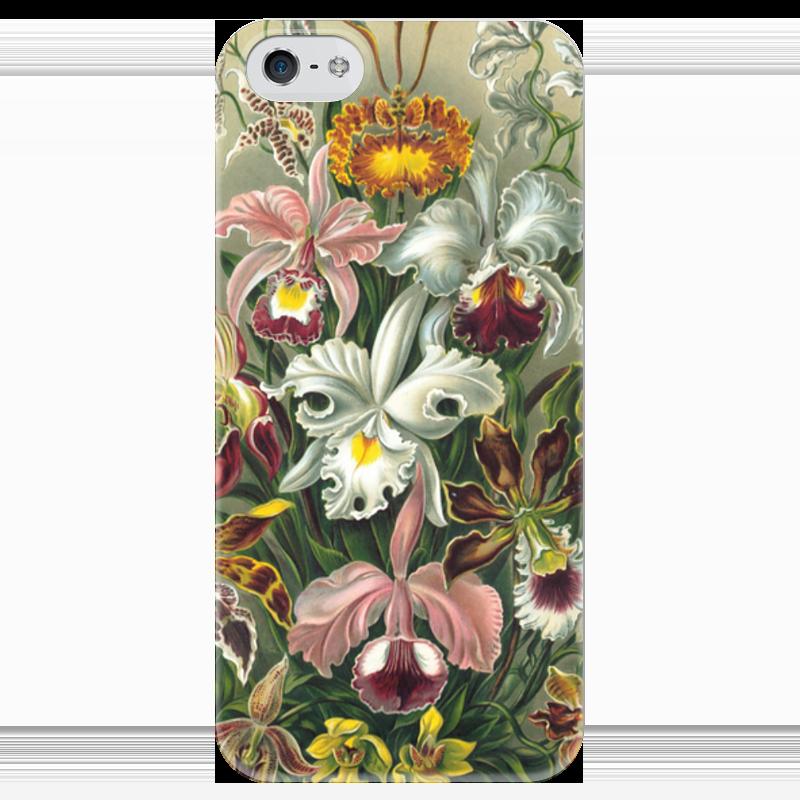 Чехол для iPhone 5 глянцевый, с полной запечаткой Printio Орхидеи (orchideae, ernst haeckel) самые дешевые орхидеи в москве