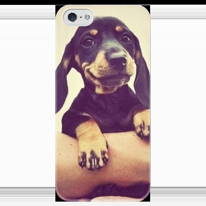 Чехол для iPhone 5 глянцевый, с полной запечаткой Printio Щенок чехол для iphone 5 глянцевый с полной запечаткой printio zayn malik