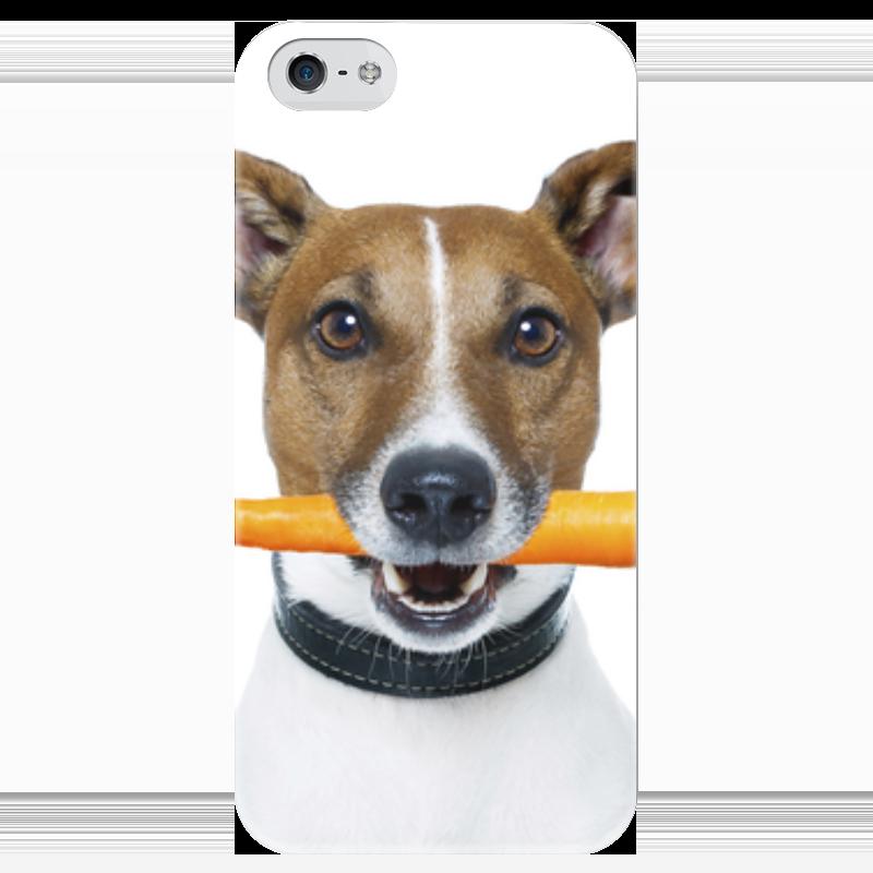 Чехол для iPhone 5 глянцевый, с полной запечаткой Printio Джек расссел терьер корм для собак джек рассел терьер юниор 0 5 кг