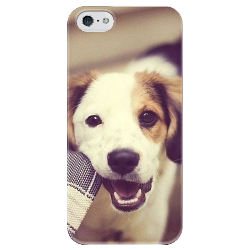Чехол для iPhone 5 глянцевый, с полной запечаткой Printio Собака чехол для iphone 5 глянцевый с полной запечаткой printio ember spirit dota 2