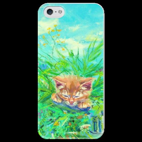 """Чехол для iPhone 5 глянцевый, с полной запечаткой """"Котенок"""" - котенок, весна, трава, рыжий кот"""