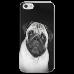 """Чехол для iPhone 5 глянцевый, с полной запечаткой """"собака"""" - dog, pug, мопс"""