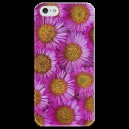 """Чехол для iPhone 5 глянцевый, с полной запечаткой """"Астры"""" - цветы, желтый, розовый, лепесток, астры"""