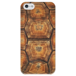 """Чехол для iPhone 5 глянцевый, с полной запечаткой """"панцирь черепахи"""" - текстура, черепаха, панцирь, панцирь черепахи"""