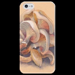 """Чехол для iPhone 5 глянцевый, с полной запечаткой """"Грибы"""" - белый, бежевый, грибы"""
