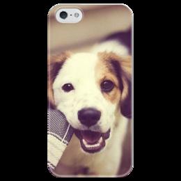 """Чехол для iPhone 5 глянцевый, с полной запечаткой """"Собака"""" - щенок, собака, jack russell, джек-рассел"""
