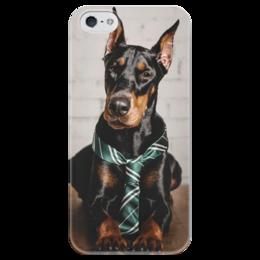 """Чехол для iPhone 5 глянцевый, с полной запечаткой """"Доберман"""" - собака, доберман, добер"""