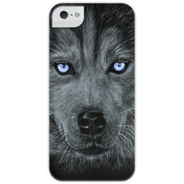 """Чехол для iPhone 5 глянцевый, с полной запечаткой """"Хаски """" - арт, husky, blue, eyes"""