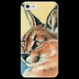 """Чехол для iPhone 5 глянцевый, с полной запечаткой """"Каракал"""" - кошка, арт, cat, оригинально, рысь, wild cat, каракал, дикая кошка"""