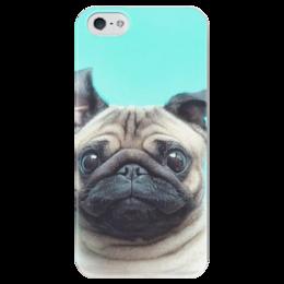 """Чехол для iPhone 5 глянцевый, с полной запечаткой """"Мопсик"""" - мопс, pug, мопсик"""