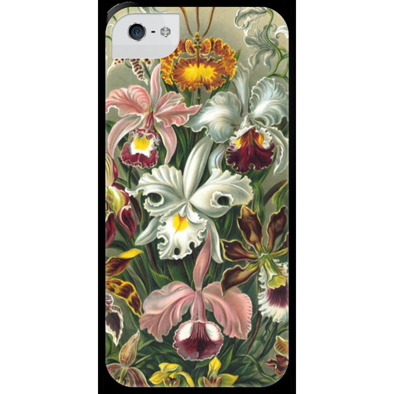 Чехол для iPhone 5 с подставкой, с полной запечаткой Printio Орхидеи (orchideae, ernst haeckel) самые дешевые орхидеи в москве