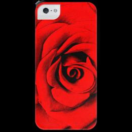 """Чехол для iPhone 5 с подставкой, с полной запечаткой """"Красная роза """" - цветы, роза, красная роза"""
