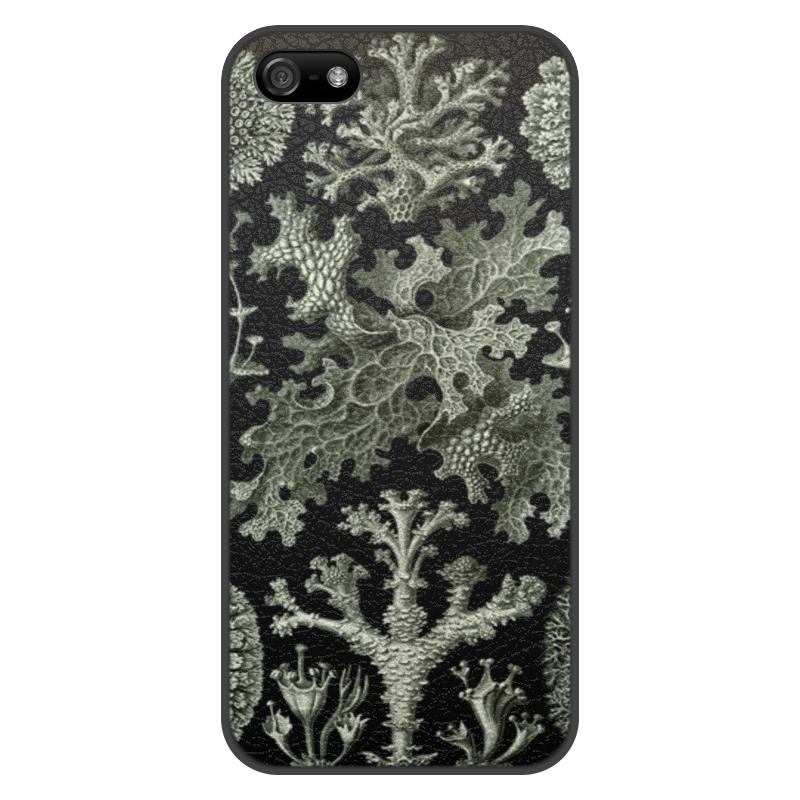 Чехол для iPhone 5/5S, объёмная печать Printio Лишайники (lichenes, ernst haeckel) mooncase чехол для iphone 6 плюс 5 5 премиум pu кожаный бумажник флип стиль и kickstand дизайн крышки случая a04