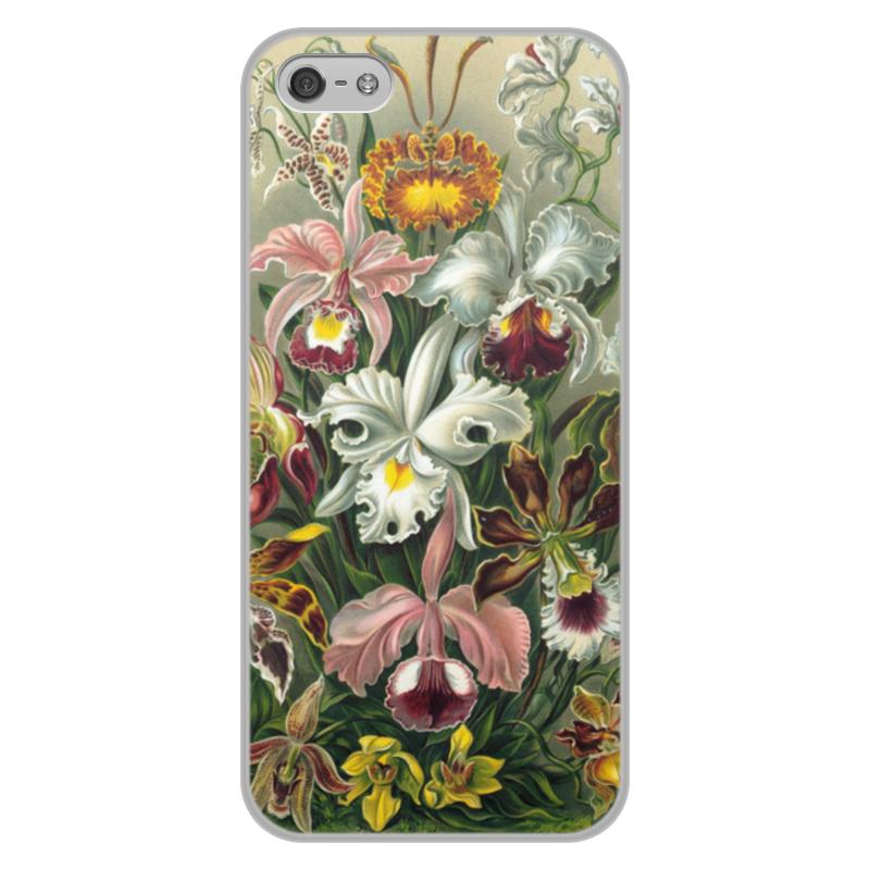 Чехол для iPhone 5/5S, объёмная печать Printio Орхидеи (orchideae, ernst haeckel) самые дешевые орхидеи в москве