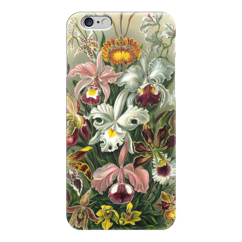 Чехол для iPhone 6 глянцевый Printio Орхидеи (orchideae, ernst haeckel) самые дешевые орхидеи в москве