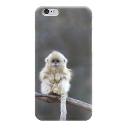 """Чехол для iPhone 6 """"милая обезьянка"""" - природа, обезьяна, милая, животное, 2016"""