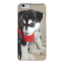"Чехол для iPhone 6 глянцевый ""Сибирский Хаски"" - щенок, сибирский хаски, husky"