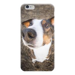 "Чехол для iPhone 6 глянцевый ""Бордер-колли"" - собака, колли, бордер-колли, коричневый"