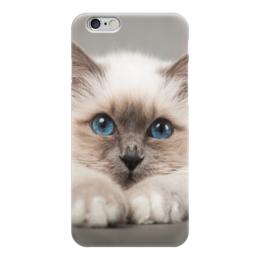 "Чехол для iPhone 6 ""Котёнок"" - 78-12, 24&62"