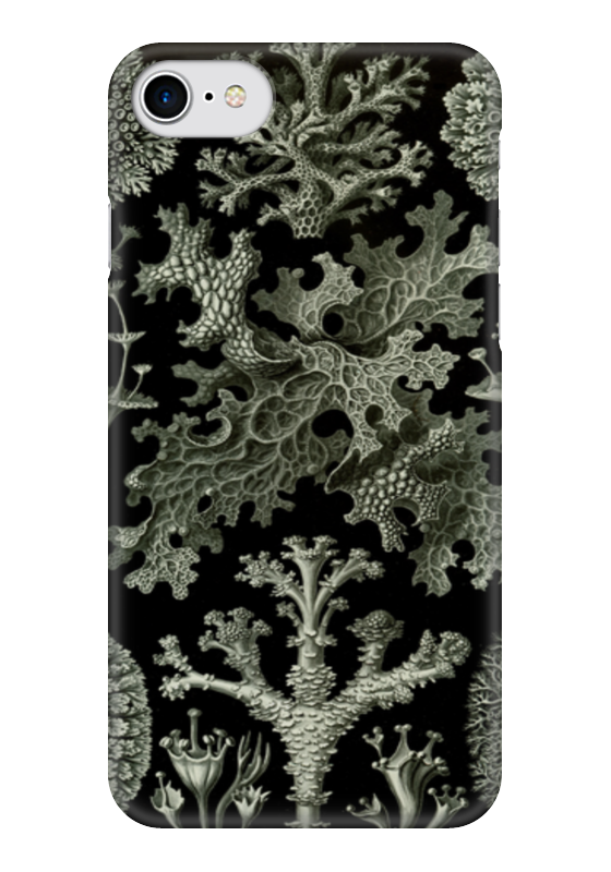 Чехол для iPhone 7 глянцевый Printio Лишайники (lichenes, ernst haeckel) чехол для samsung galaxy s7 edge силиконовый printio лишайники lichenes ernst haeckel