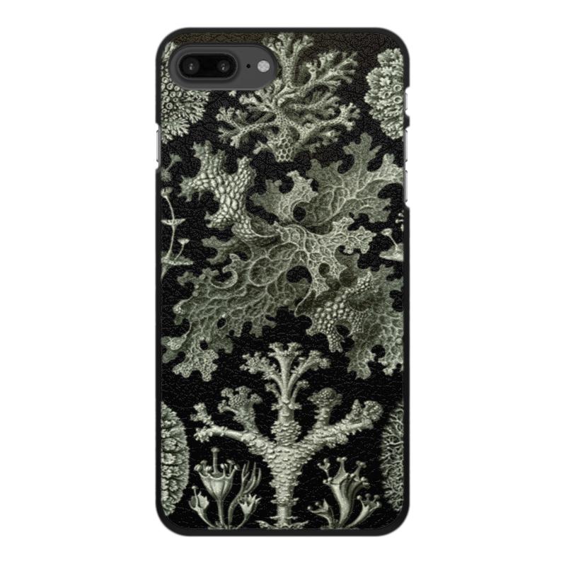 Printio Лишайники (lichenes, ernst haeckel)