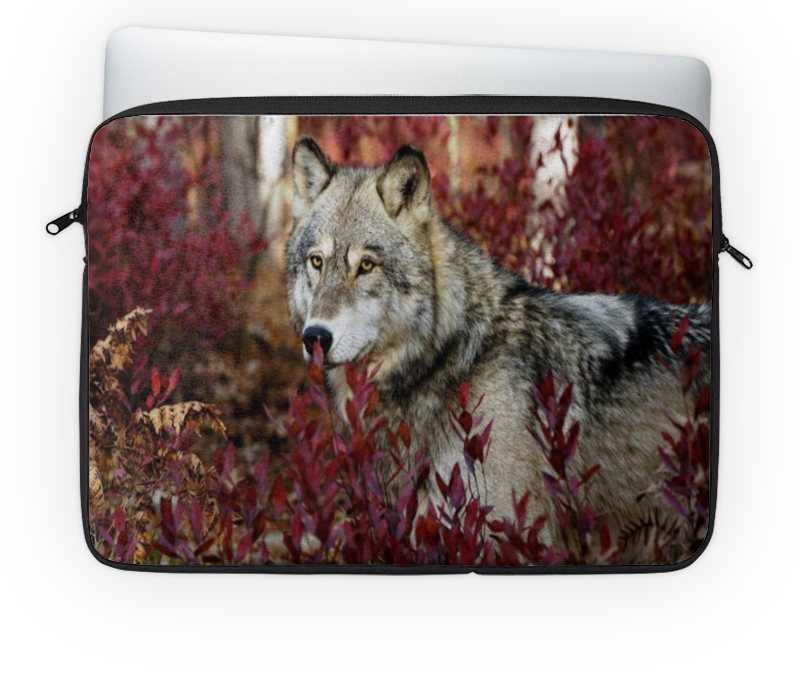 Чехол для ноутбука 14 Printio Волк в лесу чехол для ноутбука 14 printio лось в лесу