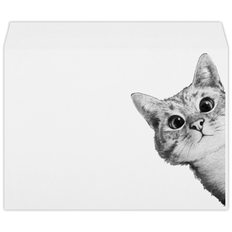 Конверт большой С4 Printio Любопытный кот самсунг гэлакси с4 мини купить