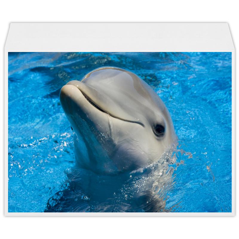 Конверт большой С4 Printio Дельфин 1