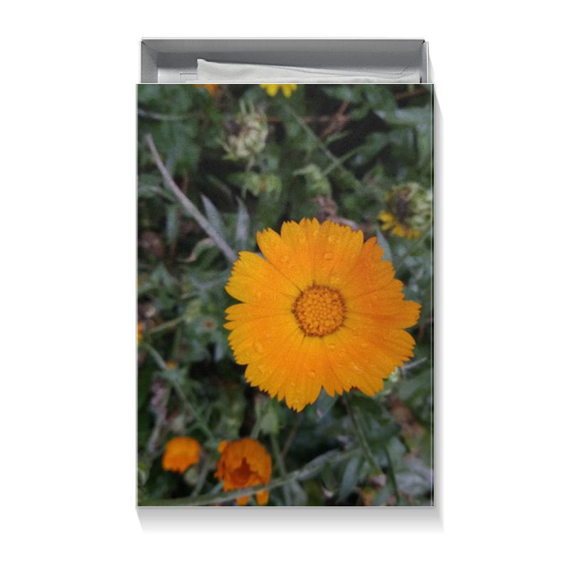Коробка для футболок Printio Летние цветы
