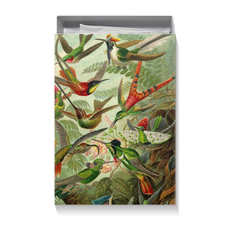 Подарочная коробка большая (пенал) Printio Колибри (trochilidae, ernst haeckel) chokocat любимой маме открытка с шоколадом 20 г