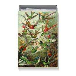 "Коробка для футболок ""Колибри (Trochilidae, Ernst Haeckel)"" - птицы, картина, эрнст геккель, 14фев, 8мар"