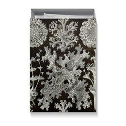 """Коробка для футболок """"Лишайники (Lichenes, Ernst Haeckel)"""" - новый год, картина, черно-белый, красота форм в природе, эрнст геккель"""
