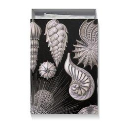 """Коробка для футболок """"Globigerina, Ernst Haeckel"""" - арт, черно-белый, ракушка, красота форм в природе, эрнст геккель"""