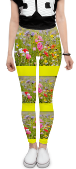 """Леггинсы """"Цветочный рай"""" - цветы, природа, цветочное поле"""
