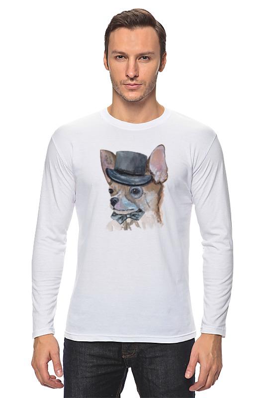 Лонгслив Printio Чихуа собака купить чихуа на авито в орехово зуево