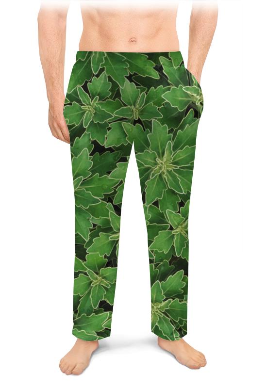 Фото - Мужские пижамные штаны Printio Зеленые листья штаны fladen authentic