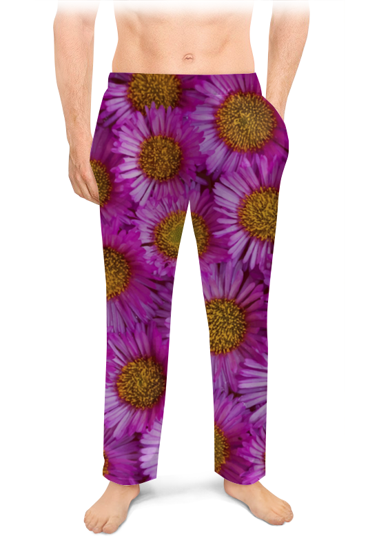 Мужские пижамные штаны Printio Астры торт printio астры
