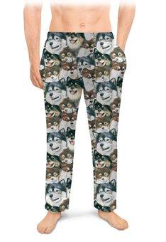 "Мужские пижамные штаны ""Лаппхунд"" - животные, собака, рыжий, лаппхунд"