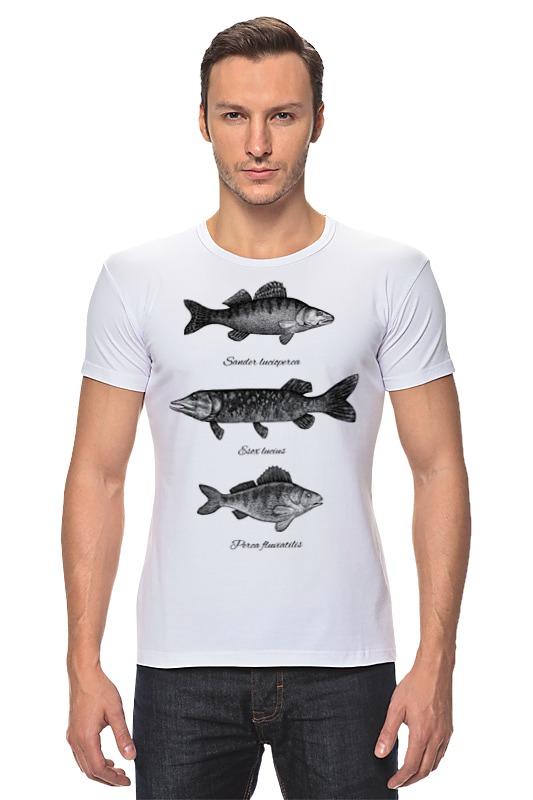 Футболка Стрэйч Printio Коллекция рыб коллекция