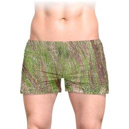 """Трусы мужские с полной запечаткой """"Поле."""" - природа, зелень, поле, луг, ковыль"""