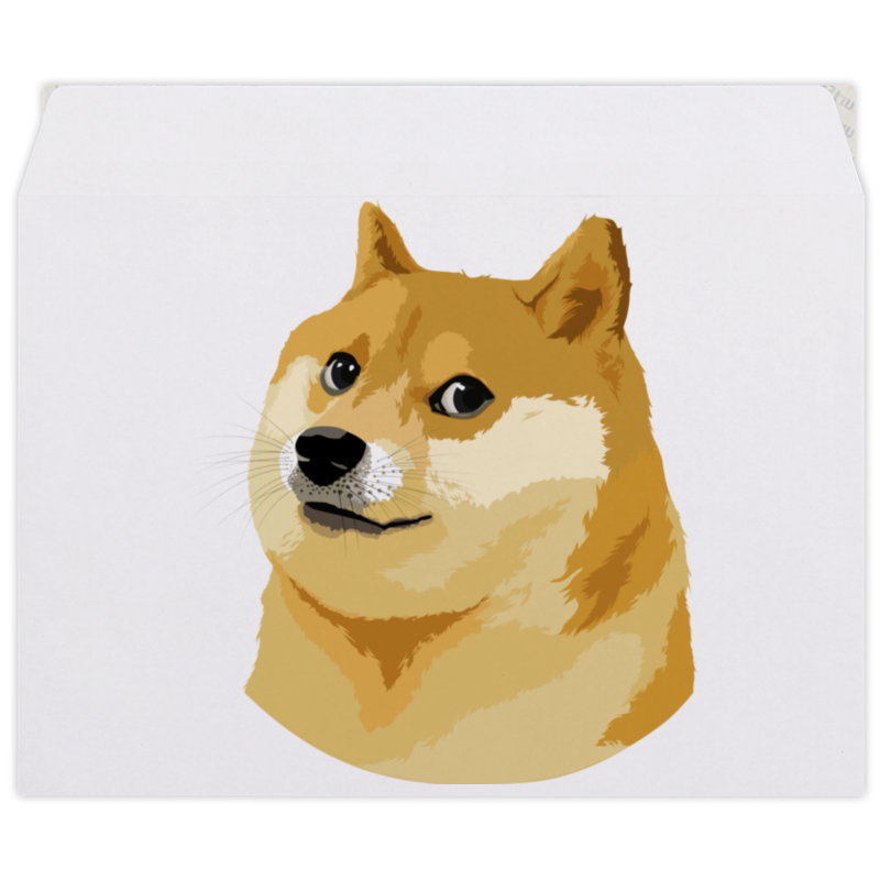 Конверт средний С5 Printio Doge doge конверт средний с5 printio rarity color line
