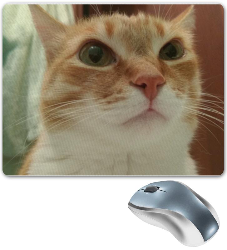 Коврик для мышки Printio Важный кот рыжий кот кубики важный транспорт