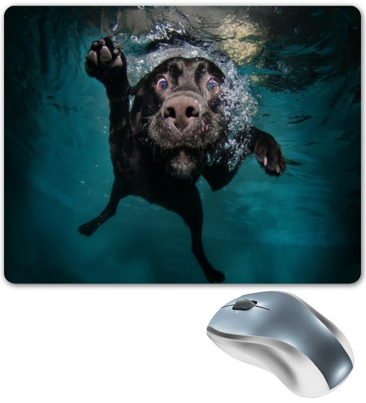 Коврик для мышки Printio Пес в воде коврик для мышки printio пес летчик
