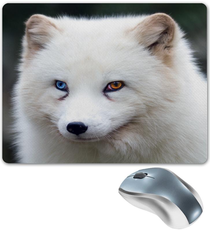 Коврик для мышки Printio Арктическая лиса