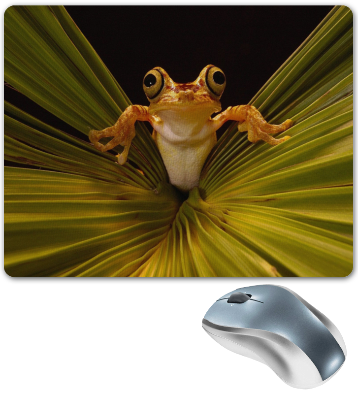 Коврик для мышки Printio Лягушка сувенир мкт оберег для кошелька лягушка